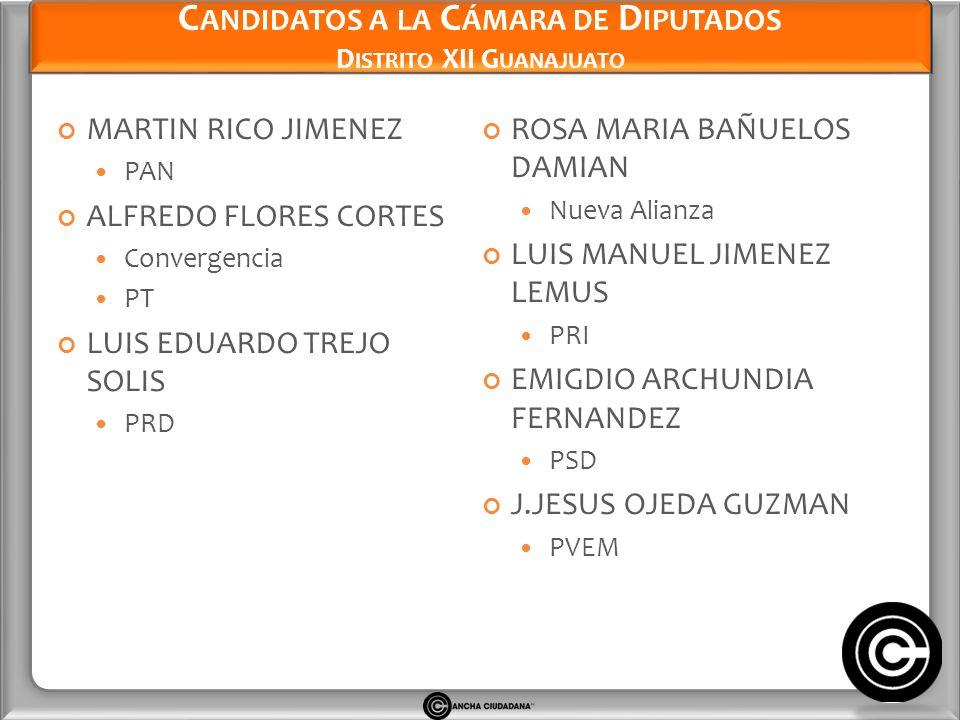 Candidatos a la Cámara de Diputados Distrito XII Guanajuato