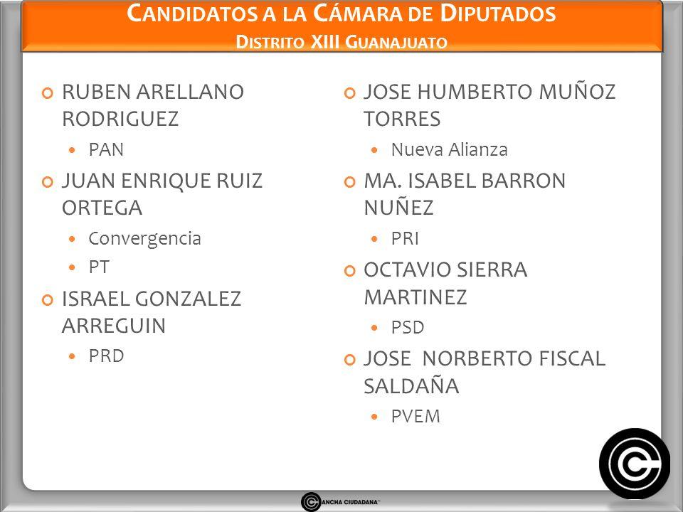 Candidatos a la Cámara de Diputados Distrito XIII Guanajuato