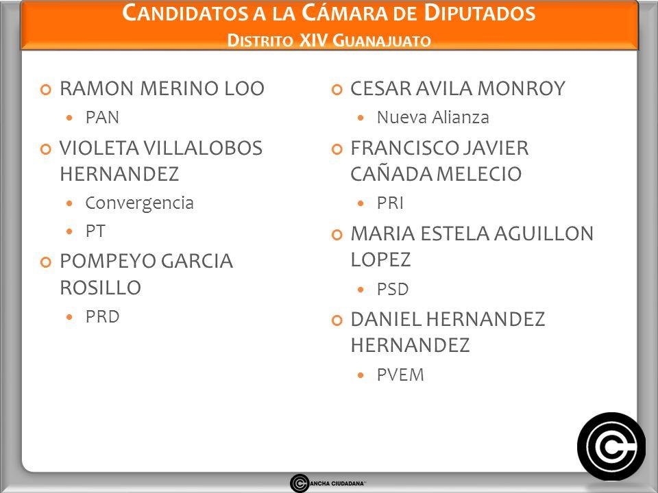 Candidatos a la Cámara de Diputados Distrito XIV Guanajuato