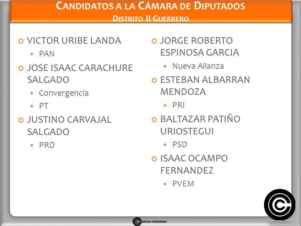 Candidatos a la Cámara de Diputados Distrito II Guerrero