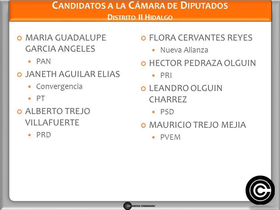 Candidatos a la Cámara de Diputados Distrito II Hidalgo