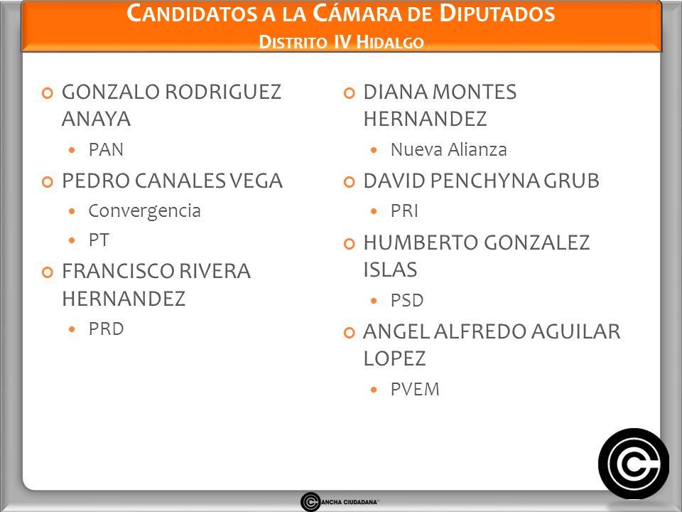 Candidatos a la Cámara de Diputados Distrito IV Hidalgo