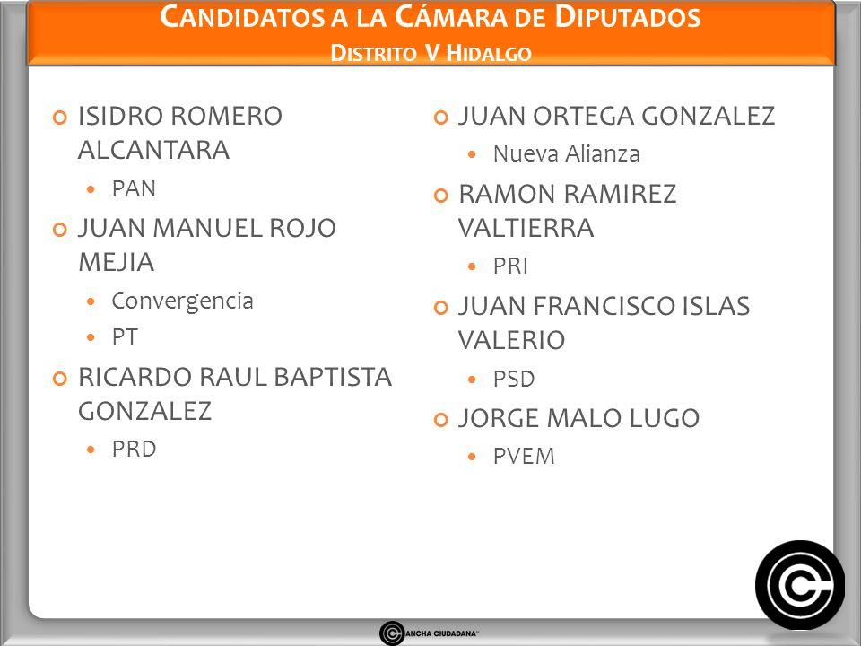 Candidatos a la Cámara de Diputados Distrito V Hidalgo