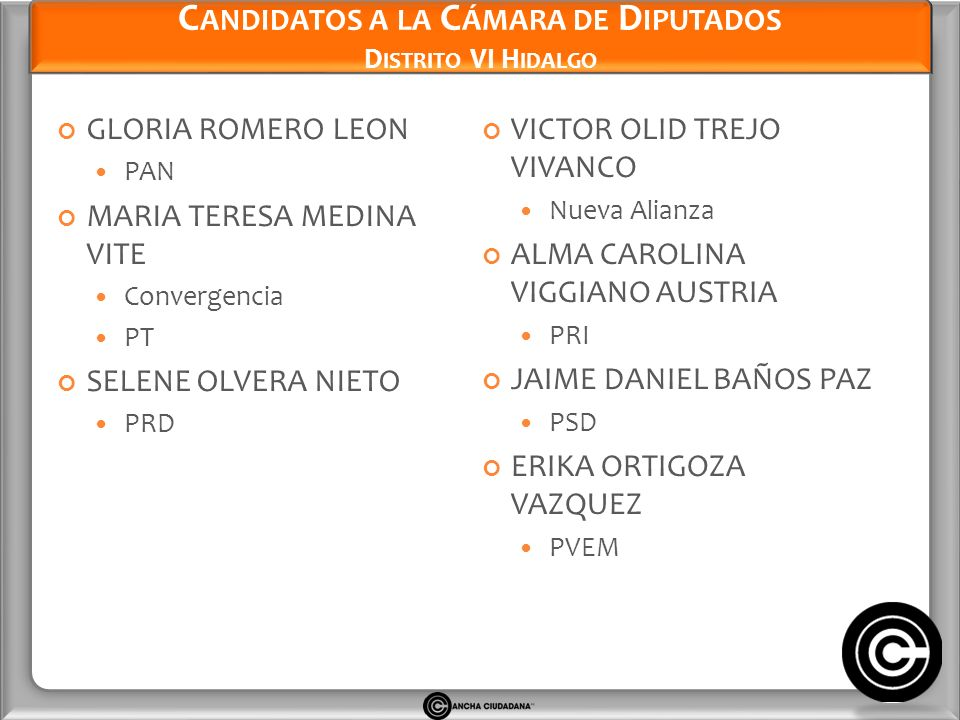 Candidatos a la Cámara de Diputados Distrito VI Hidalgo