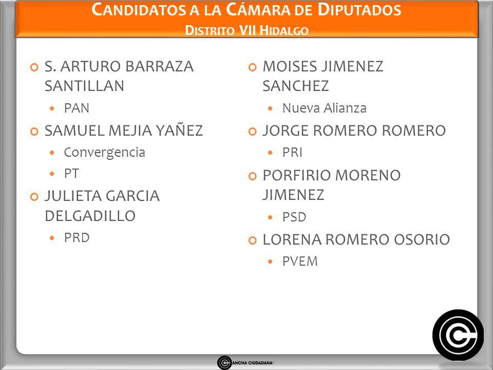 Candidatos a la Cámara de Diputados Distrito VII Hidalgo