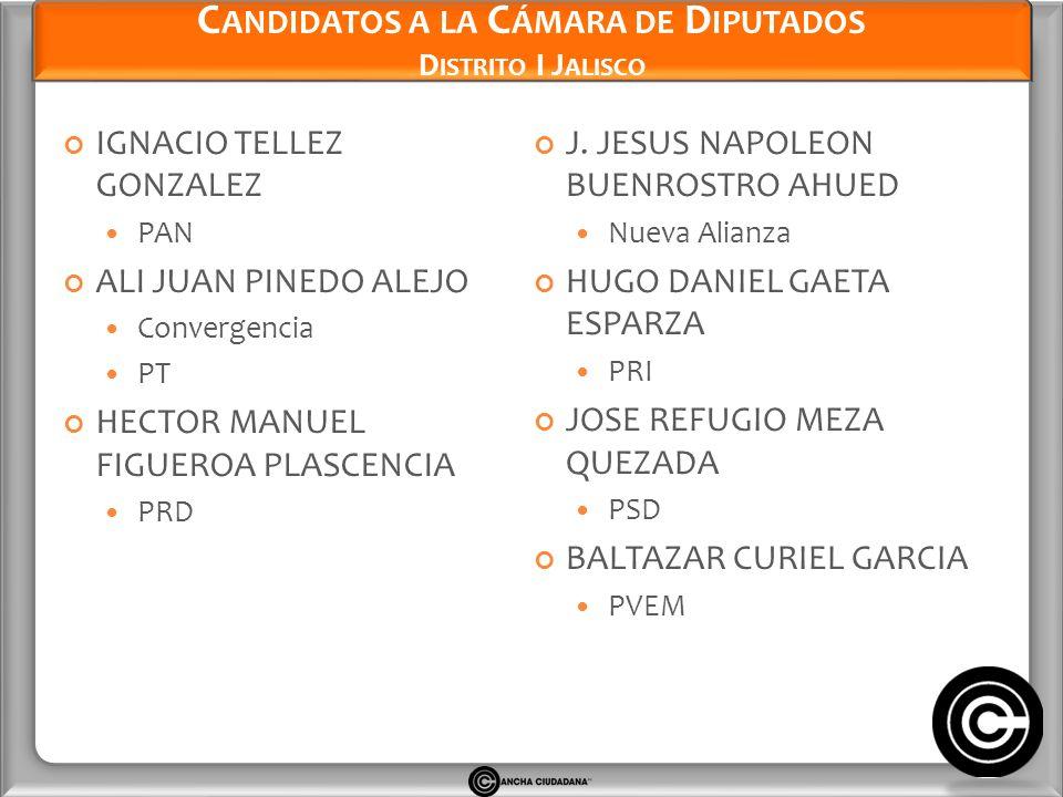 Candidatos a la Cámara de Diputados Distrito I Jalisco