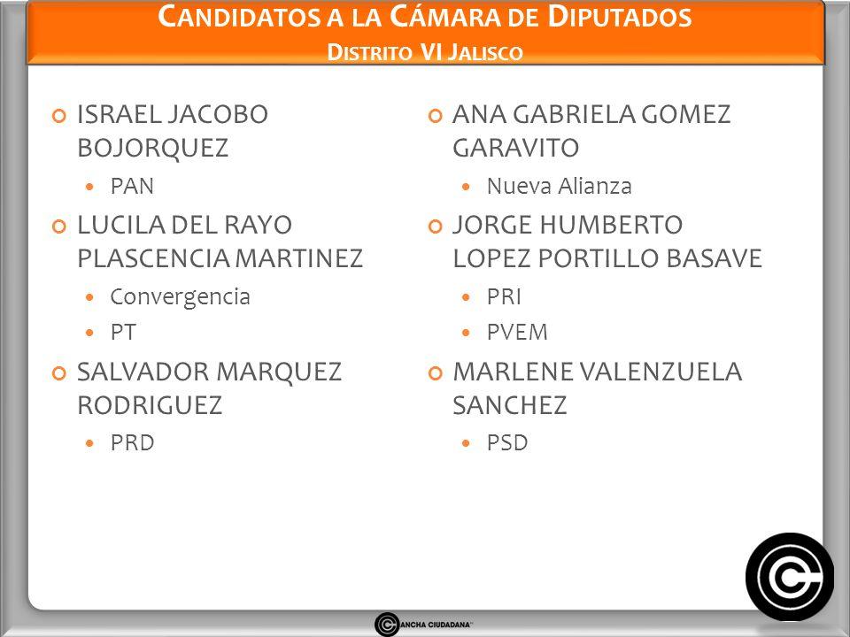 Candidatos a la Cámara de Diputados Distrito VI Jalisco