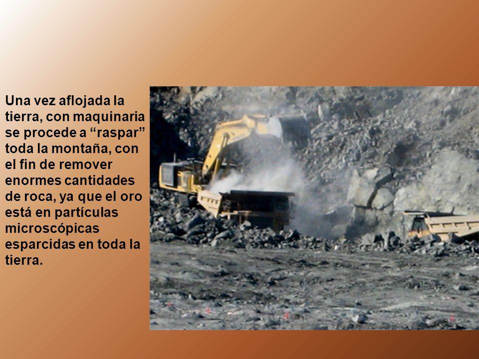 Una vez aflojada la tierra, con maquinaria se procede a raspar toda la montaña, con el fin de remover enormes cantidades de roca, ya que el oro está en partículas microscópicas esparcidas en toda la tierra.