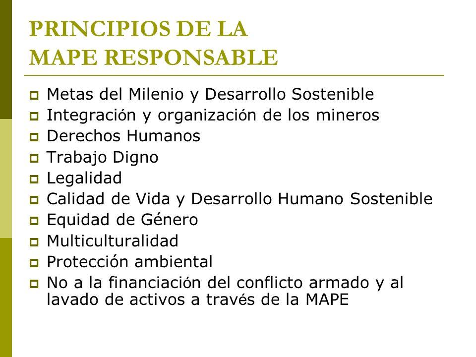 PRINCIPIOS DE LA MAPE RESPONSABLE