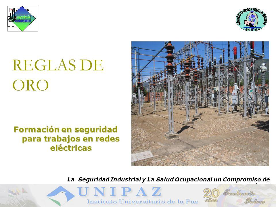 Formación en seguridad para trabajos en redes eléctricas