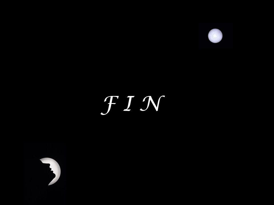 F I N