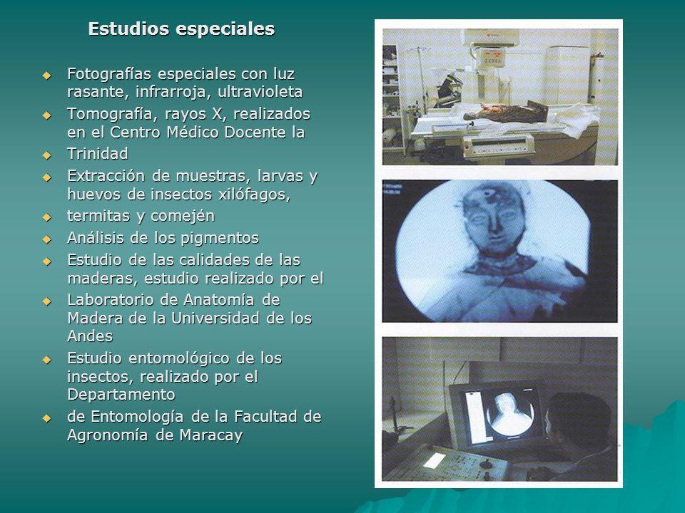 Estudios especiales Fotografías especiales con luz rasante, infrarroja, ultravioleta. Tomografía, rayos X, realizados en el Centro Médico Docente la.
