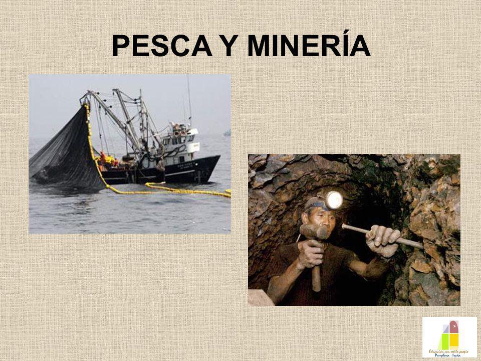 PESCA Y MINERÍA