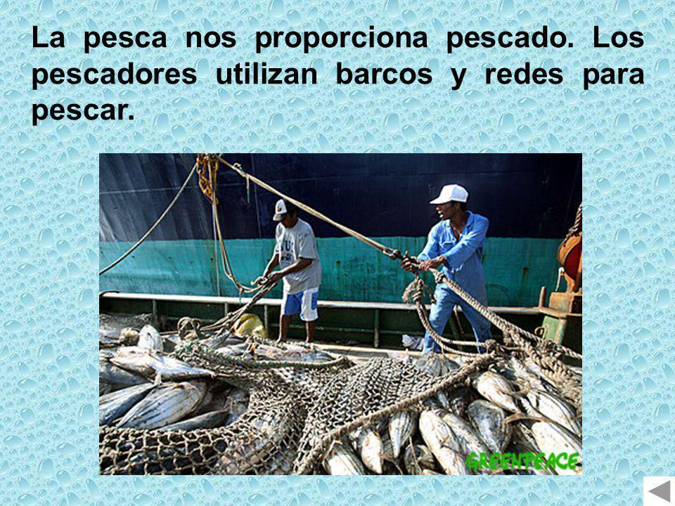 La pesca nos proporciona pescado