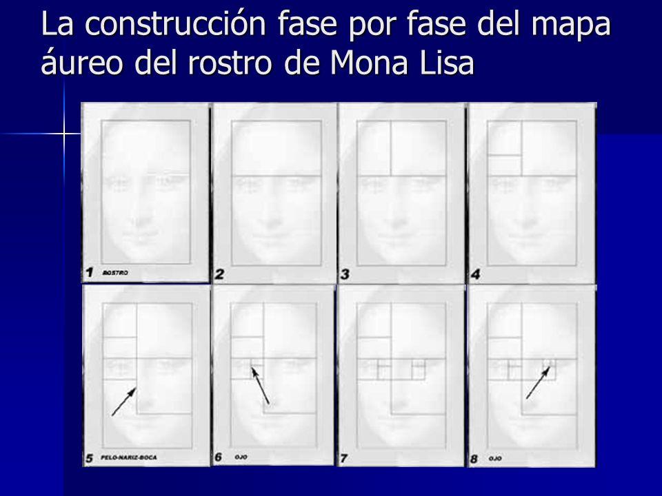 La construcción fase por fase del mapa áureo del rostro de Mona Lisa