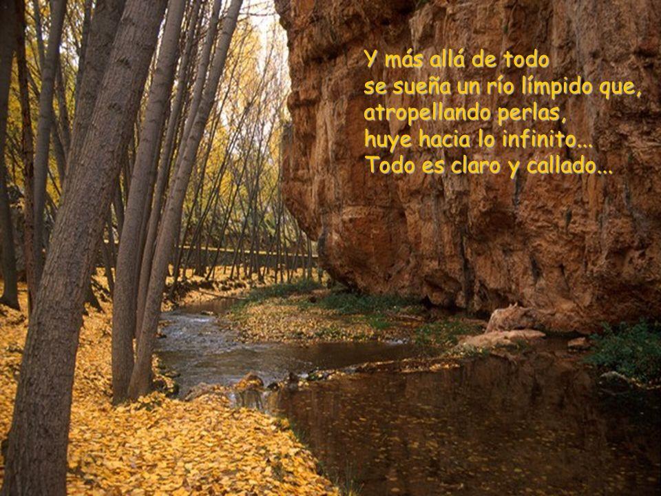 Y más allá de todo se sueña un río límpido que, atropellando perlas, huye hacia lo infinito...