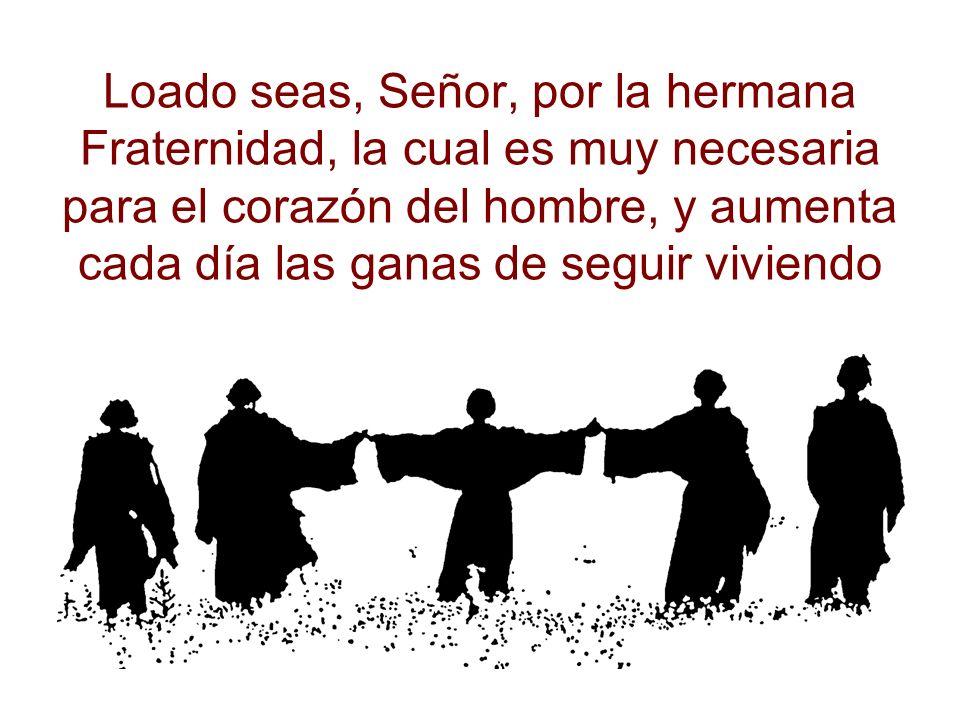 Loado seas, Señor, por la hermana Fraternidad, la cual es muy necesaria para el corazón del hombre, y aumenta cada día las ganas de seguir viviendo