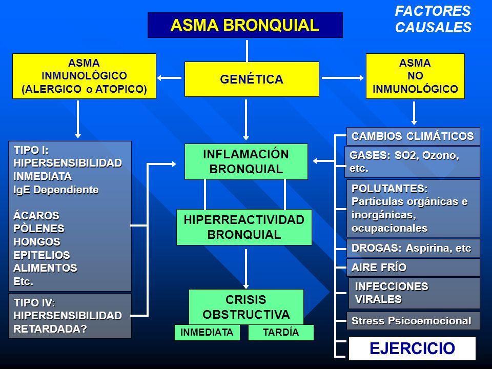 ASMA BRONQUIAL EJERCICIO