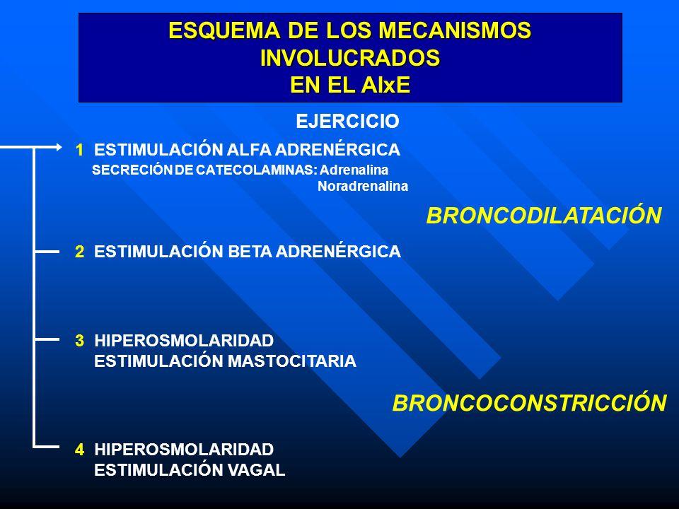 ESQUEMA DE LOS MECANISMOS INVOLUCRADOS