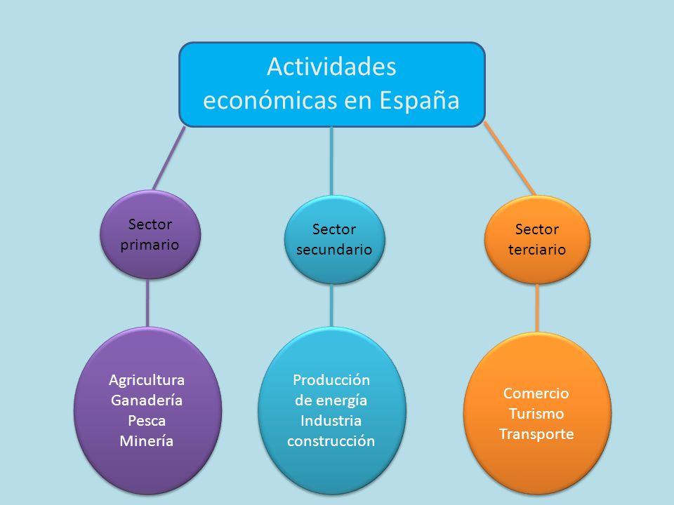 Actividades económicas en España