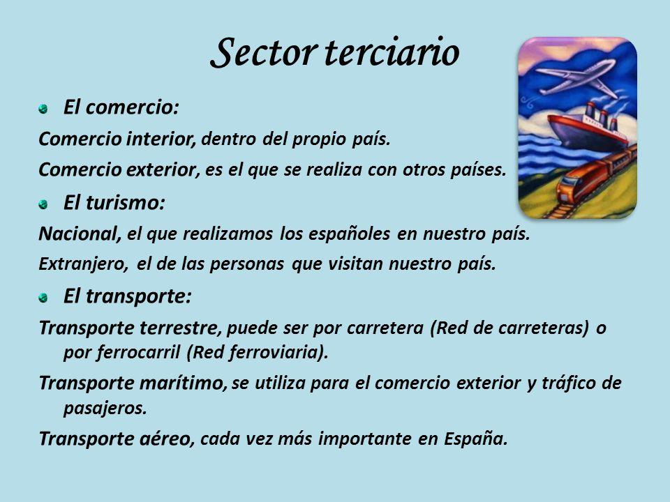 Sector terciario El comercio: El turismo: El transporte: