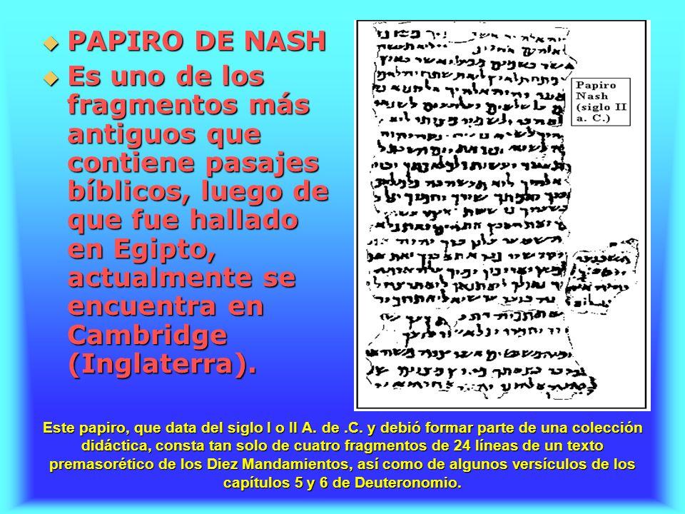 PAPIRO DE NASH