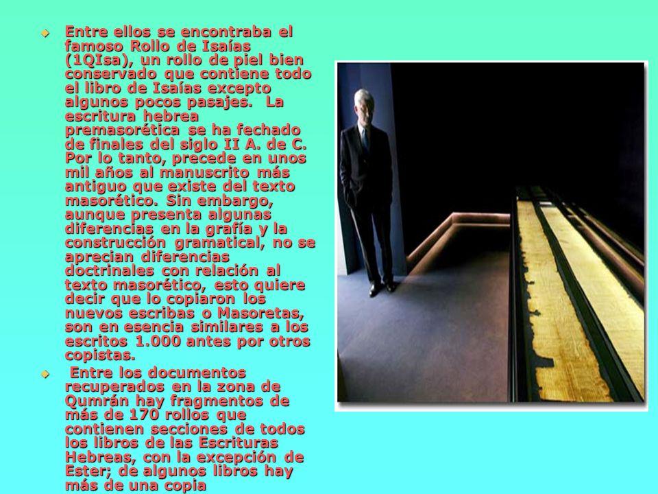 Entre ellos se encontraba el famoso Rollo de Isaías (1QIsa), un rollo de piel bien conservado que contiene todo el libro de Isaías excepto algunos pocos pasajes. La escritura hebrea premasorética se ha fechado de finales del siglo II A. de C. Por lo tanto, precede en unos mil años al manuscrito más antiguo que existe del texto masorético. Sin embargo, aunque presenta algunas diferencias en la grafía y la construcción gramatical, no se aprecian diferencias doctrinales con relación al texto masorético, esto quiere decir que lo copiaron los nuevos escribas o Masoretas, son en esencia similares a los escritos 1.000 antes por otros copistas.