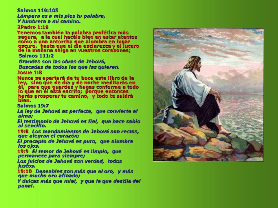 Salmos 119:105 Lámpara es a mis pies tu palabra, Y lumbrera a mi camino. 2Pedro 1:19.