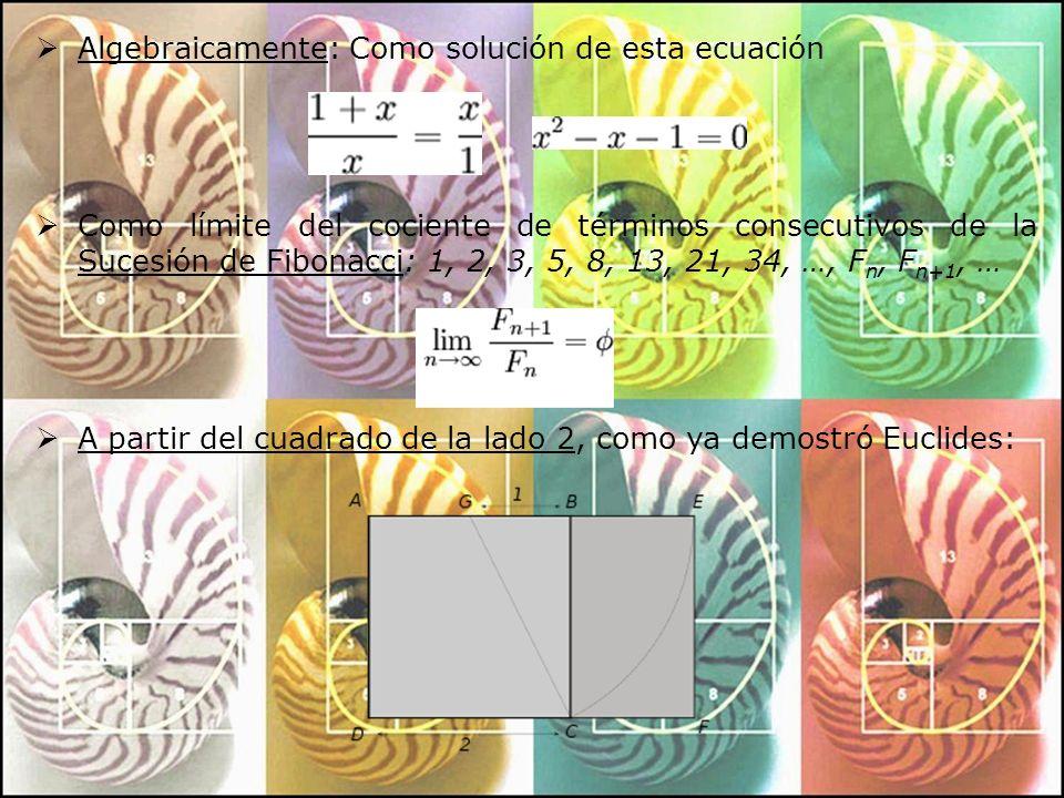Algebraicamente: Como solución de esta ecuación