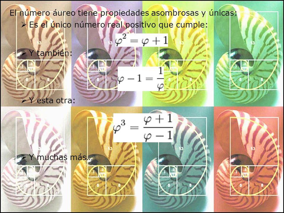 El número áureo tiene propiedades asombrosas y únicas: