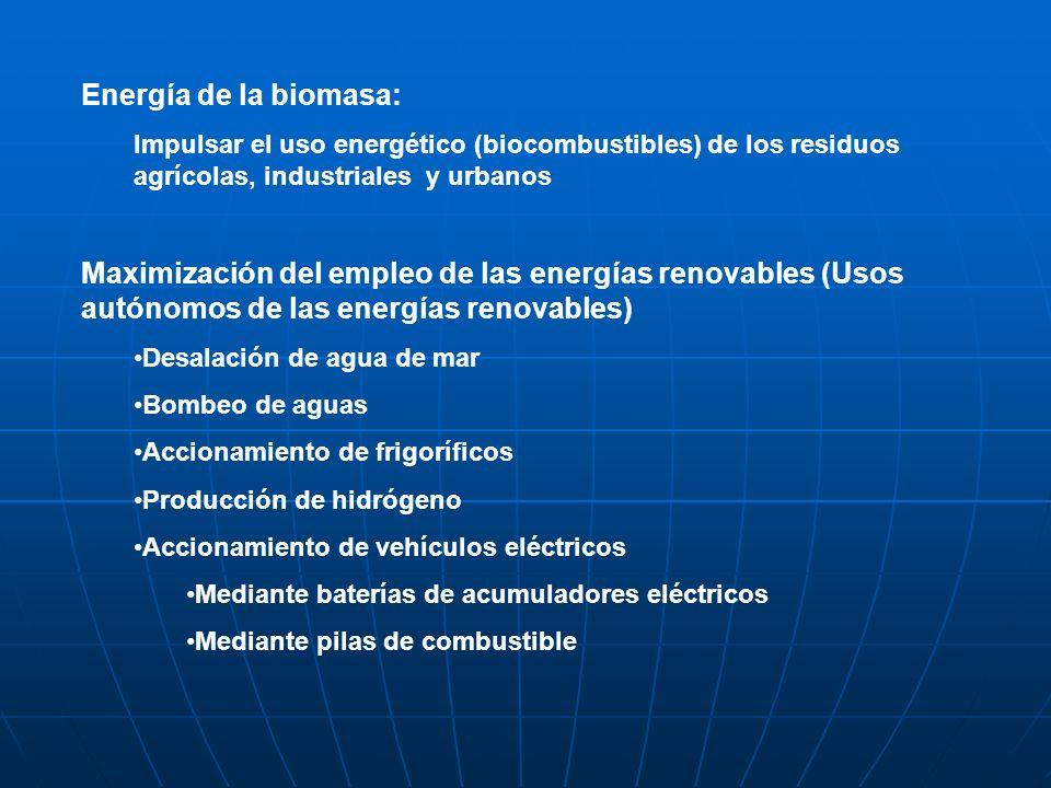 Energía de la biomasa: Impulsar el uso energético (biocombustibles) de los residuos agrícolas, industriales y urbanos.