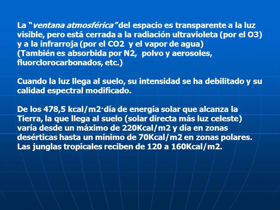 La ventana atmosférica del espacio es transparente a la luz visible, pero está cerrada a la radiación ultravioleta (por el O3) y a la infrarroja (por el CO2 y el vapor de agua)