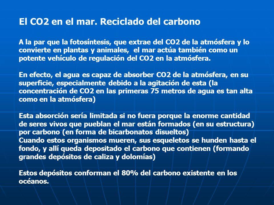 El CO2 en el mar. Reciclado del carbono