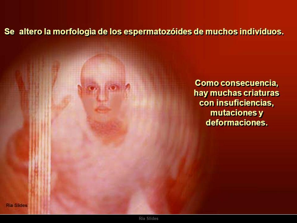 Se altero la morfologìa de los espermatozóides de muchos indivíduos.
