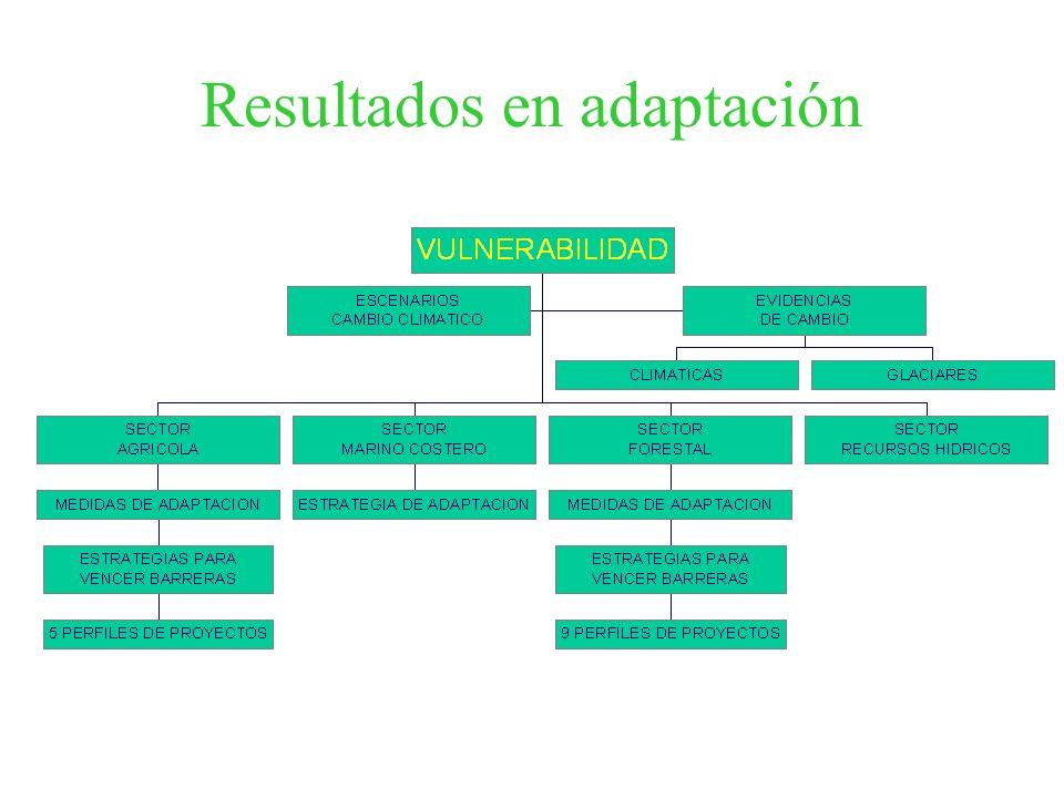 Resultados en adaptación