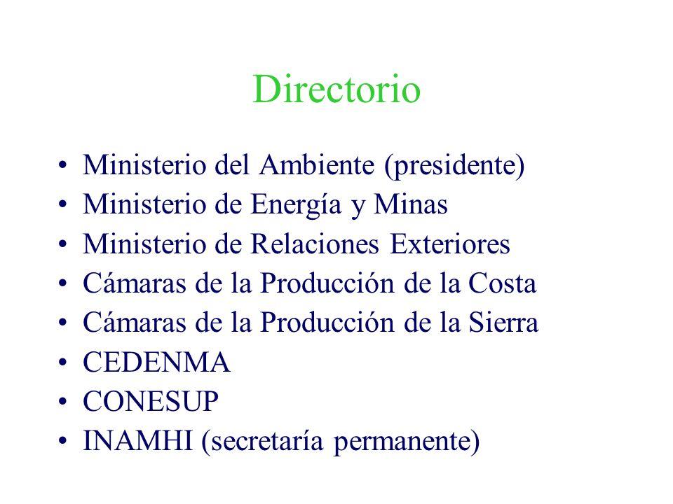 Directorio Ministerio del Ambiente (presidente)
