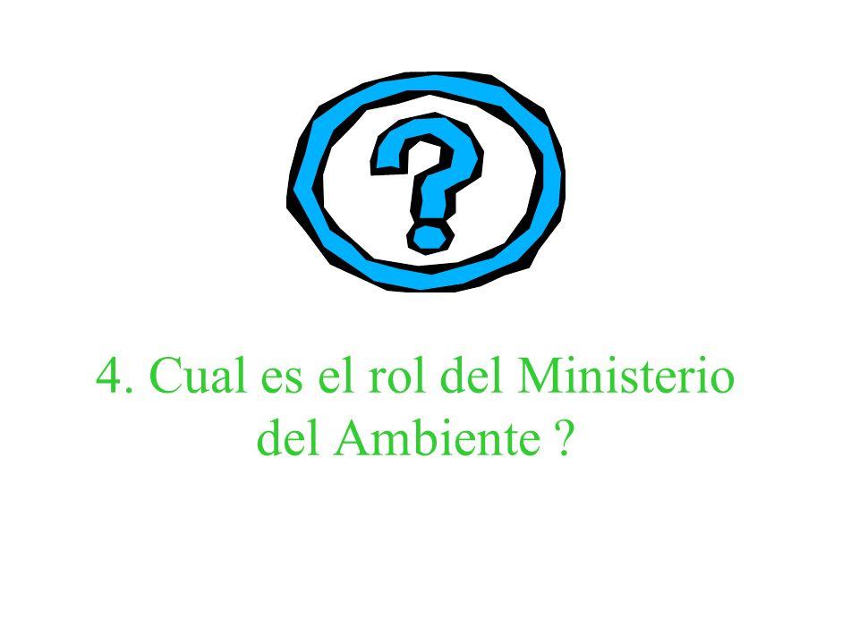 4. Cual es el rol del Ministerio del Ambiente