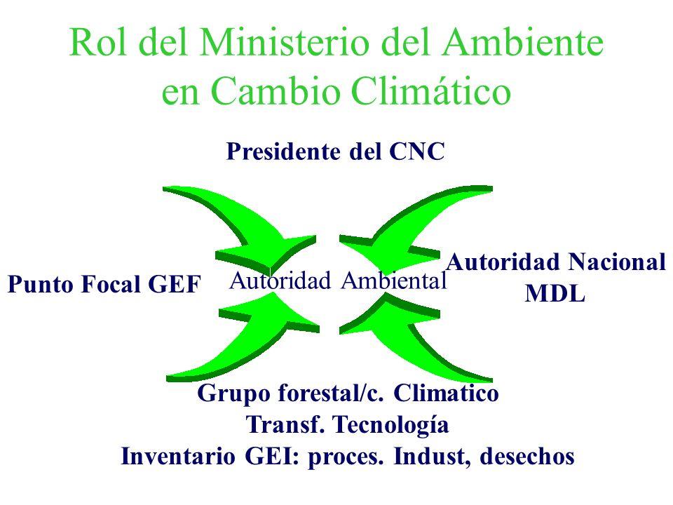 Rol del Ministerio del Ambiente en Cambio Climático