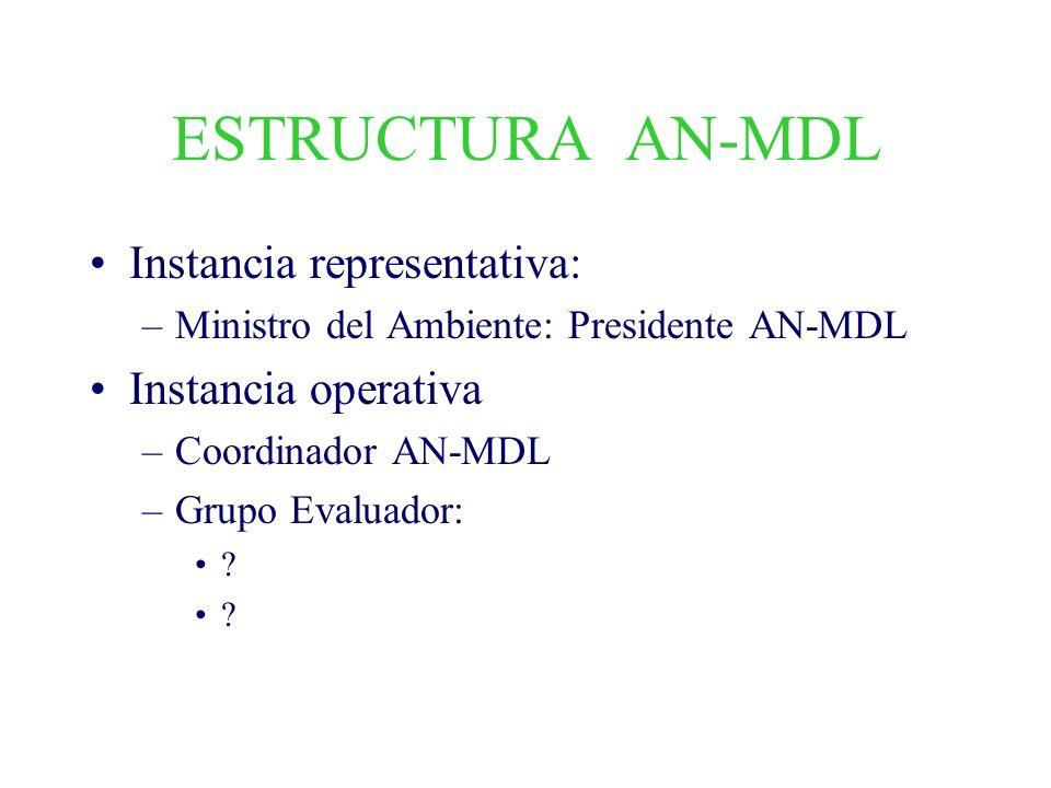 ESTRUCTURA AN-MDL Instancia representativa: Instancia operativa