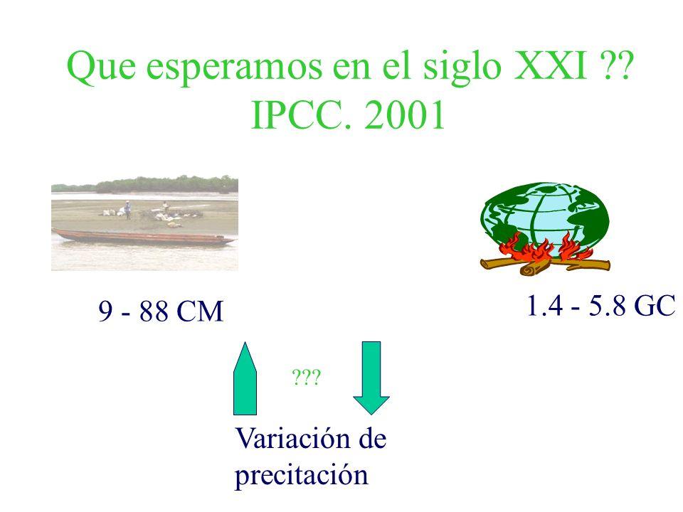 Que esperamos en el siglo XXI IPCC. 2001