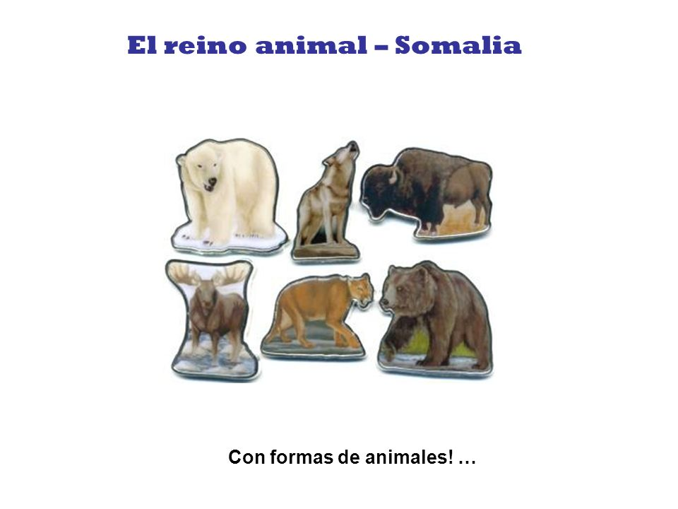 El reino animal – Somalia