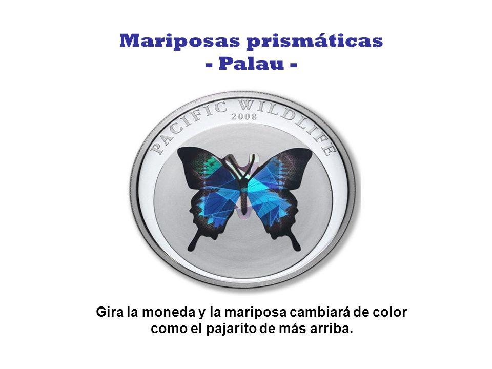 Mariposas prismáticas Gira la moneda y la mariposa cambiará de color