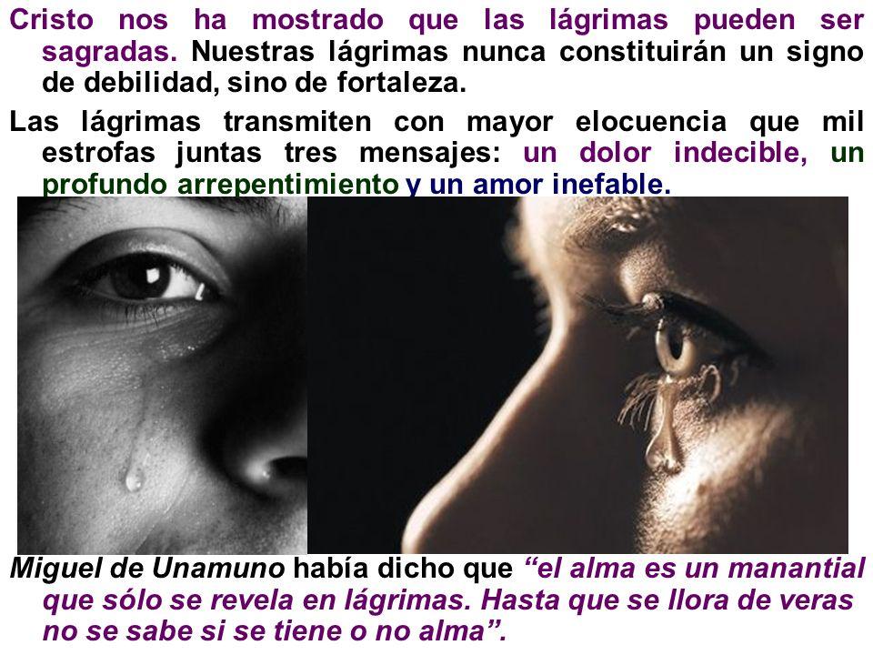 Cristo nos ha mostrado que las lágrimas pueden ser sagradas