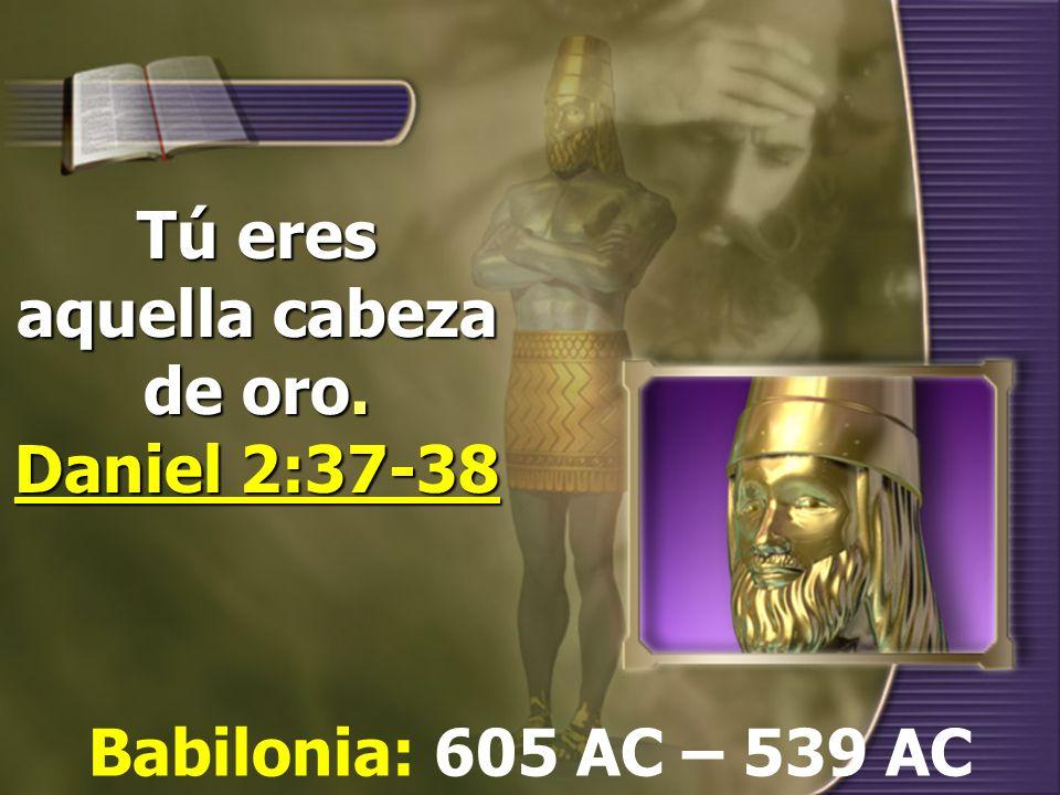 Tú eres aquella cabeza de oro. Daniel 2:37-38