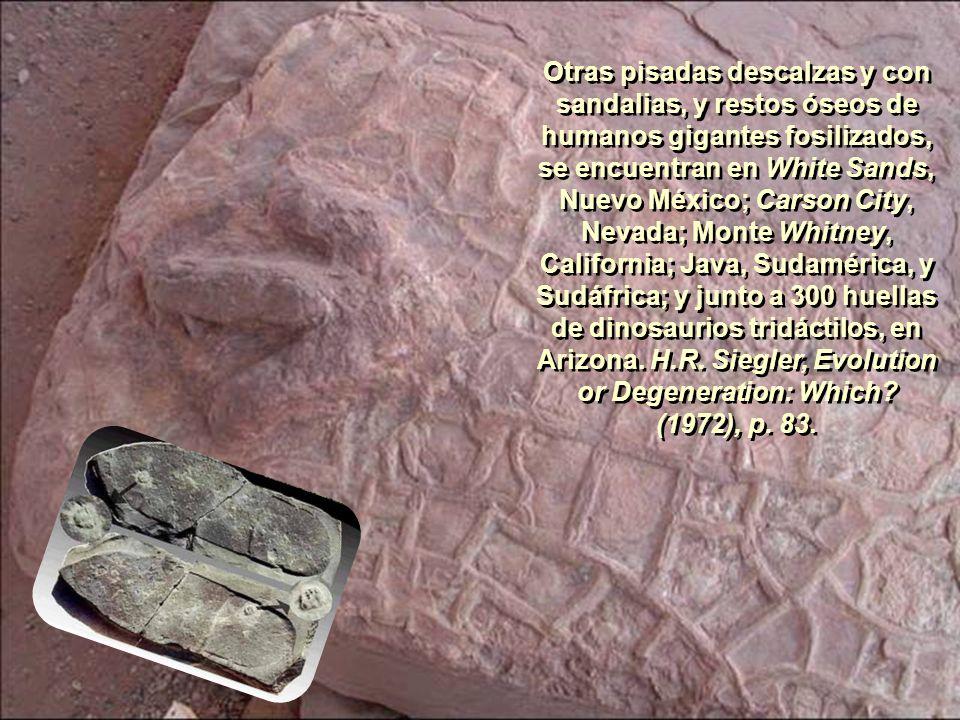 Otras pisadas descalzas y con sandalias, y restos óseos de humanos gigantes fosilizados, se encuentran en White Sands, Nuevo México; Carson City, Nevada; Monte Whitney, California; Java, Sudamérica, y Sudáfrica; y junto a 300 huellas de dinosaurios tridáctilos, en Arizona.