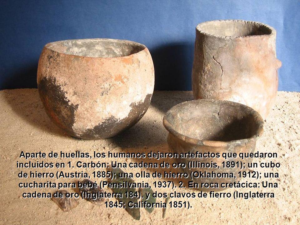 Aparte de huellas, los humanos dejaron artefactos que quedaron incluidos en 1.