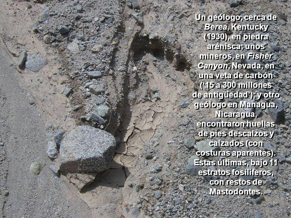 Un geólogo, cerca de Berea, Kentucky (1930), en piedra arenisca; unos mineros, en Fisher Canyon, Nevada, en una veta de carbón ('15 a 300 millones de antigüedad'); y otro geólogo en Managua, Nicaragua, encontraron huellas de pies descalzos y calzados (con costuras aparentes).