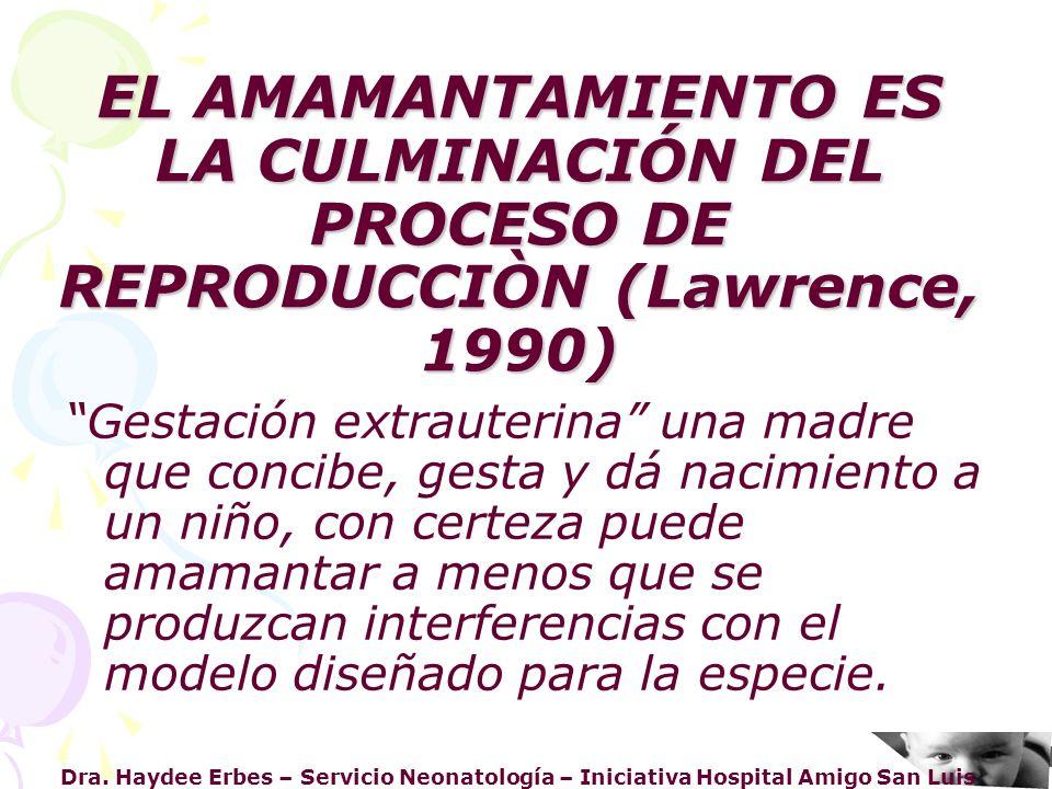 EL AMAMANTAMIENTO ES LA CULMINACIÓN DEL PROCESO DE REPRODUCCIÒN (Lawrence, 1990)