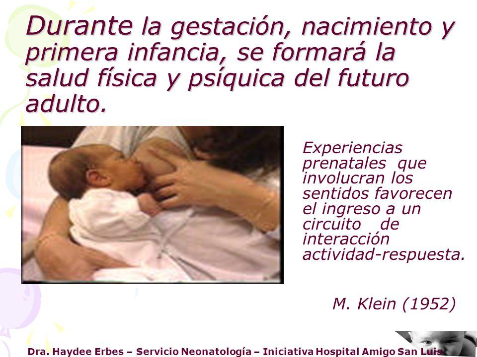 Durante la gestación, nacimiento y primera infancia, se formará la salud física y psíquica del futuro adulto.