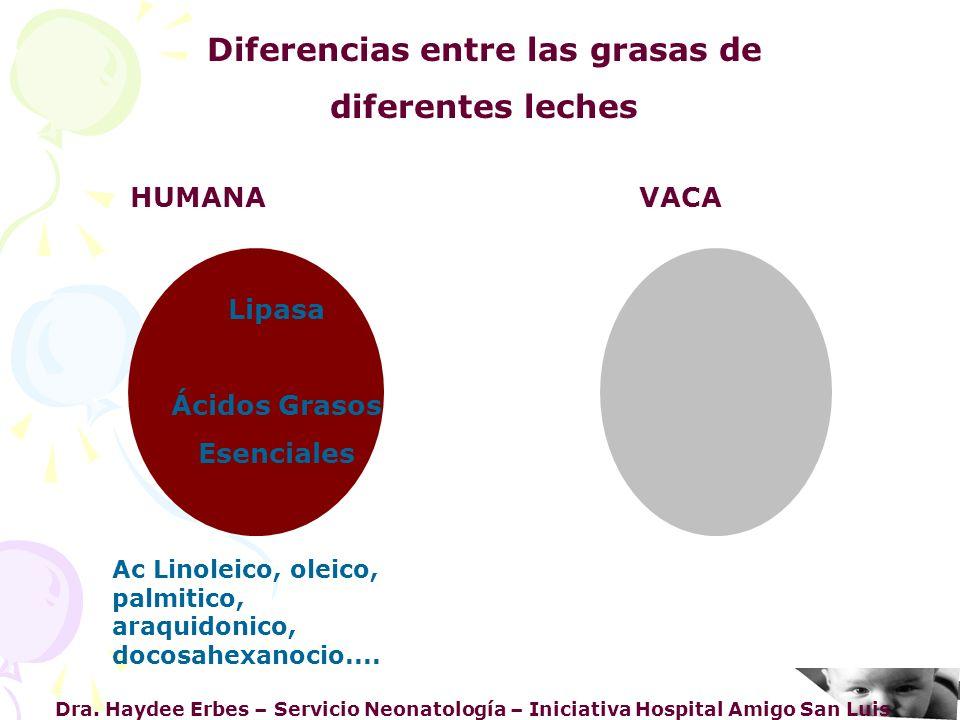 Diferencias entre las grasas de